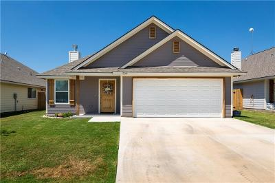 Springtown Single Family Home For Sale: 229 Lovers Path Drive