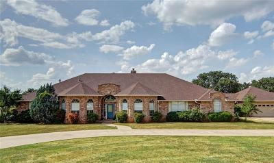 Palo Pinto County Single Family Home For Sale: 1025 Brazos Heights Road