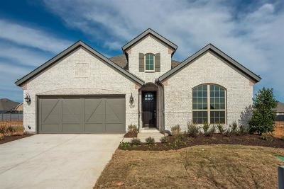 Little Elm Single Family Home For Sale: 1137 Cottonseed Street