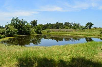 Stephenville Farm & Ranch For Sale: 1166 County Road 456