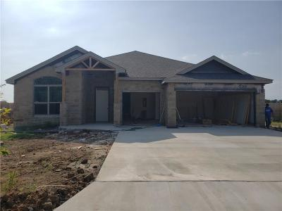 Brownwood Single Family Home For Sale: 1502 Southgate Drive