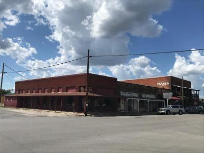 Palo Pinto County Commercial For Sale: 200 N Main Street