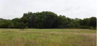 Wise County Farm & Ranch For Sale: Tbd County Road 4196