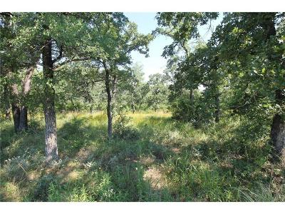 Wise County Residential Lots & Land For Sale: L 380 Three Forks Crossing