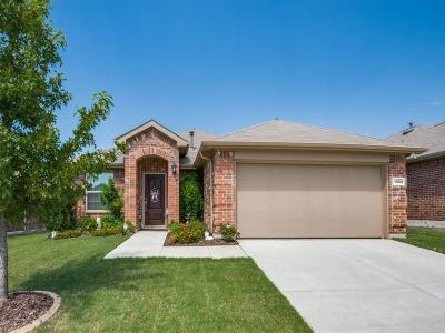 Fort Worth Single Family Home For Sale: 14501 Broomstick Road