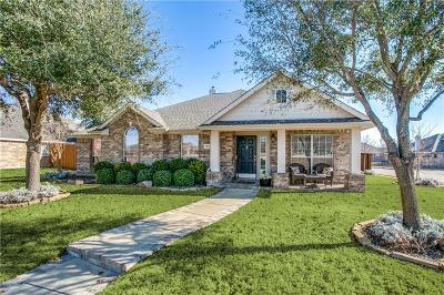 Allen Single Family Home For Sale: 1548 Prairie View Drive