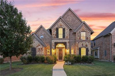Frisco Single Family Home For Sale: 5644 Potter Road