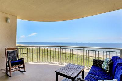 Galveston County, Harris County Condo For Sale: 801 E Beach Drive #BC0704