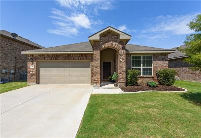 Denton Single Family Home For Sale: 3424 Oceanview Drive