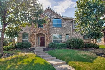 Dallas County, Denton County, Collin County, Cooke County, Grayson County, Jack County, Johnson County, Palo Pinto County, Parker County, Tarrant County, Wise County Single Family Home For Sale: 9727 Downbrook Drive
