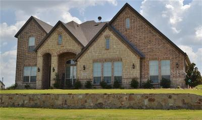 Collin County Single Family Home For Sale: 1115 The Trails Drive