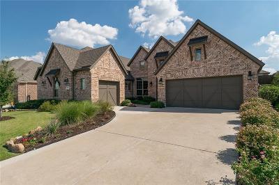 Little Elm Single Family Home For Sale: 9920 Snake River Drive