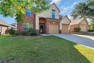 Plano Single Family Home For Sale: 9724 Fandango Lane