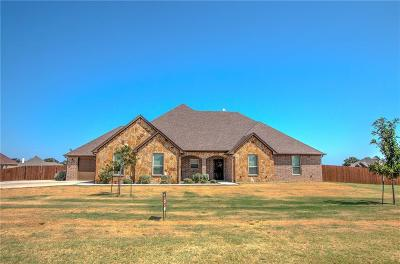 Parker County Single Family Home For Sale: 130 Brock Lane