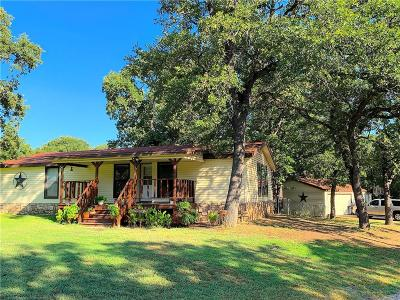 Parker County Single Family Home For Sale: 115 Windmill Road