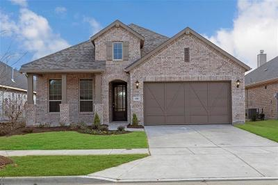 Little Elm Single Family Home For Sale: 4204 Canopy Street