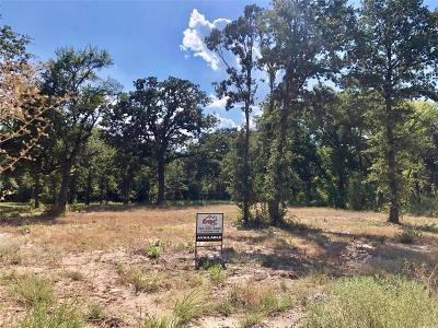 Parker County Residential Lots & Land For Sale: 127 Magnolia Place