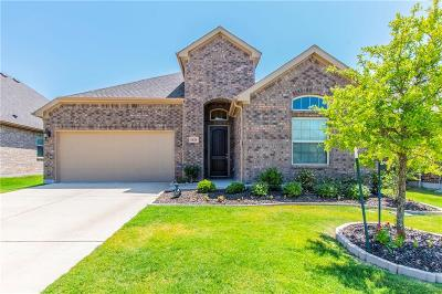 Little Elm Single Family Home For Sale: 1028 Lake Cypress Lane