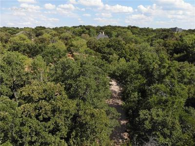 Denton County Residential Lots & Land For Sale: 1031 Emerald Sound Boulevard