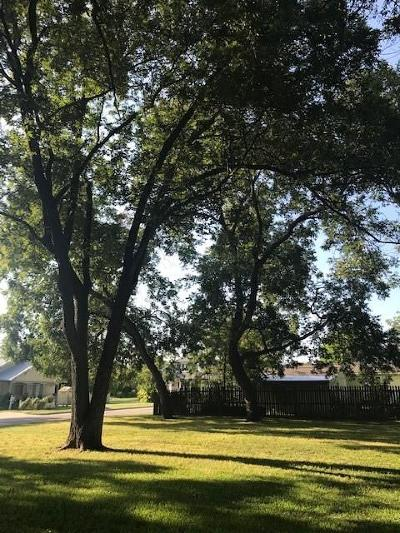 Collin County Residential Lots & Land For Sale: Collin St/Central Avenue
