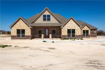 Parker County Single Family Home For Sale: 2027 Jo Jones Lane