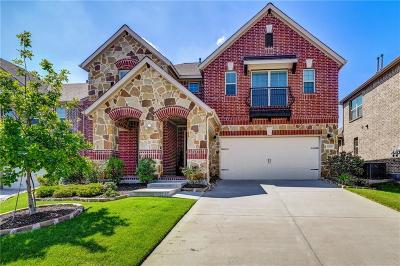Collin County Single Family Home For Sale: 8809 McCutchins Drive