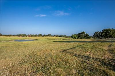 Comanche County Single Family Home For Sale: 301 County Road 475