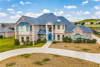 Cedar Hill Single Family Home For Sale: 2112 Becky Lane