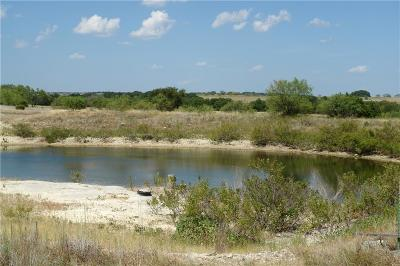 Mills County Farm & Ranch For Sale: 1082 Hwy 84