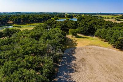 Waco Farm & Ranch For Sale: 1094 Boys Ranch Road