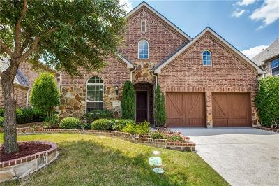 Irving Single Family Home For Sale: 212 Guadalupe Drive