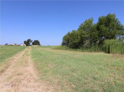 Parker County, Hood County, Palo Pinto County, Wise County Farm & Ranch For Sale: 1040 Heathington Road