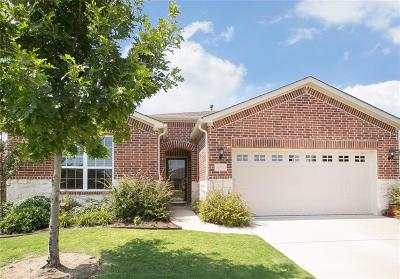 Frisco Single Family Home For Sale: 7001 Zurich Lane