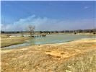 Parker County, Tarrant County, Hood County, Wise County Farm & Ranch Active Contingent: 4438 N Fm 730