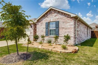 Little Elm Single Family Home For Sale: 14700 Sawmill Drive