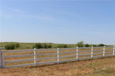 Parker County Residential Lots & Land For Sale: 166b John Chisholm Road