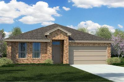 Fort Worth Single Family Home For Sale: 9501 Belle River Trail