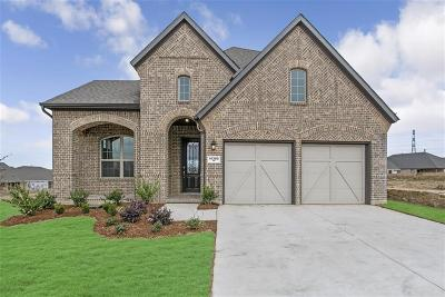 Fort Worth Single Family Home For Sale: 14300 Spitfire Trail