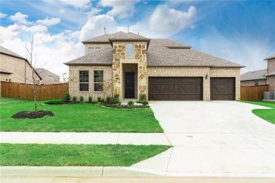 Little Elm Single Family Home For Sale: 1613 Serra Drive