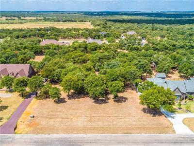 Parker County Residential Lots & Land For Sale: Lot 199 S Sugartree Drive