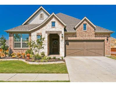 Collin County, Dallas County, Denton County Single Family Home For Sale: 2437 Stallion Street