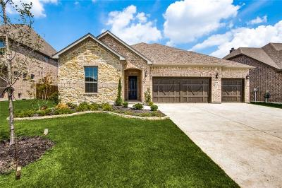 Little Elm Single Family Home For Sale: 1304 Torrent Drive
