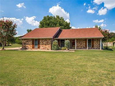 Frisco Single Family Home For Sale: 15396 Plum Lane