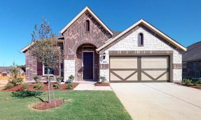 Little Elm Single Family Home For Sale: 1108 Quail Dove Drive