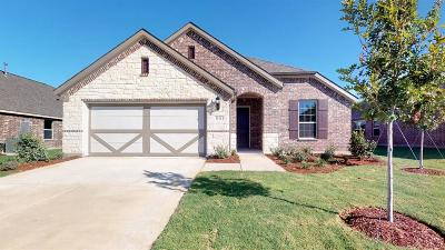 Little Elm Single Family Home For Sale: 1112 Quail Dove Drive