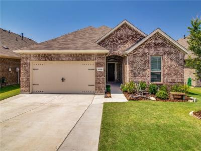 Denton County Single Family Home For Sale: 4308 Lakeview Drive