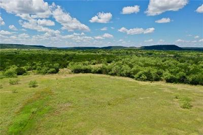 Palo Pinto County Farm & Ranch For Sale: 001 Fm Road 919