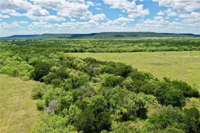 Palo Pinto County Farm & Ranch For Sale: 002 Fm Road 919
