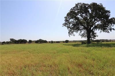 Parker County Farm & Ranch For Sale: 1040b Heathington Road