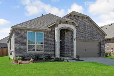 Aubrey Single Family Home For Sale: 1804 Steppe Trail Drive